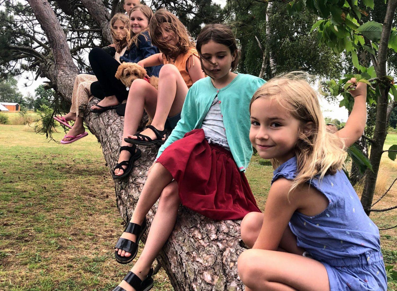piger på træ